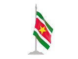 Search Websites Products and Services in Suriname