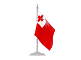 Search Websites Products and Services in Tonga